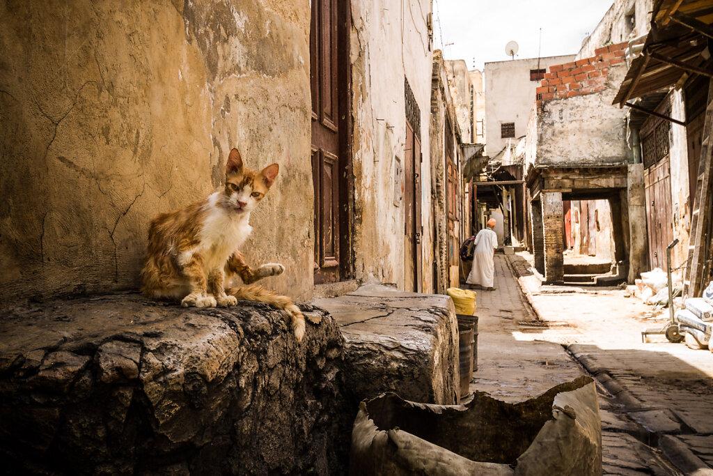 Maroc - Fez